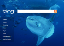 Bing is a strong competitor to Google in the search industry.
