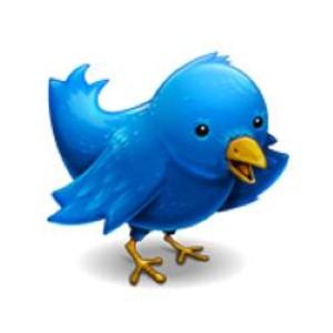 Twitter acquires Spindle to bring local search to social media marketing.