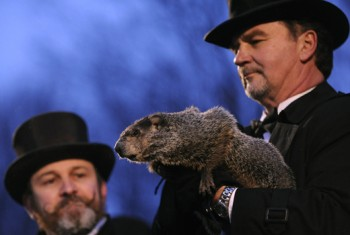 """On Groundhog Day, countless people searched for incorrect variations of Punxsutawney Phil's name, to the point where """"Punksatony Phil"""" ranked on Google search trends - but proper spellings count for SEO."""