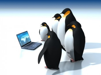 Google Penguin has changed the way marketers should focus on link building.