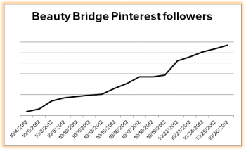 Beauty Bridge Pinterest followers