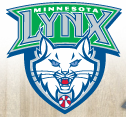 The WNBA's Minnesota Lynx saw the team Google+ Page disappear after the Page manager left the organization. The incident should remind brands that its important to select trusted managers for social media marketing.