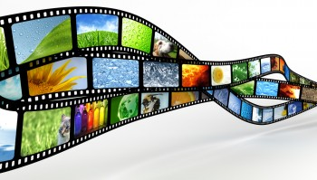 Marketers who invest appropriately can create viral videos that steal the spotlight and drive continual internet marketing results.