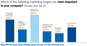 DemandBase Audience Targeting Objective for 2013