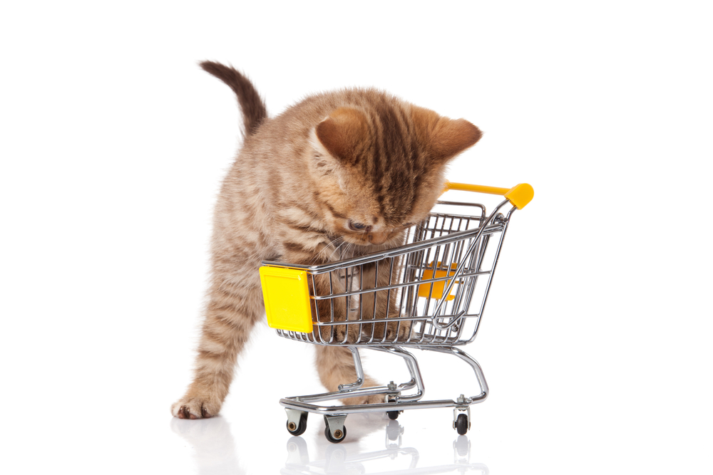 Shopping for Pets Online