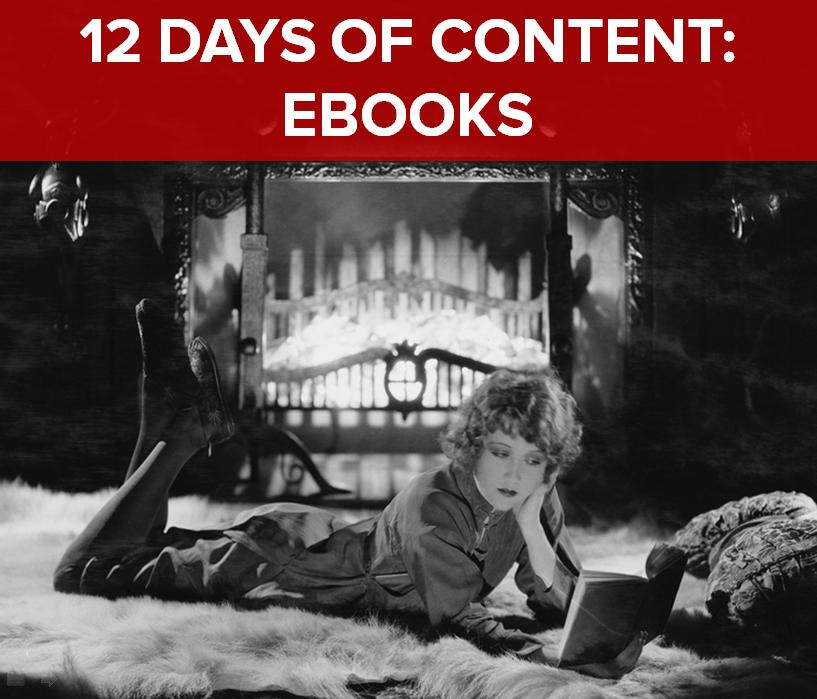For the 12 days of content, we are featuring ebooks: the longer and heavily formatted relative of white papers.