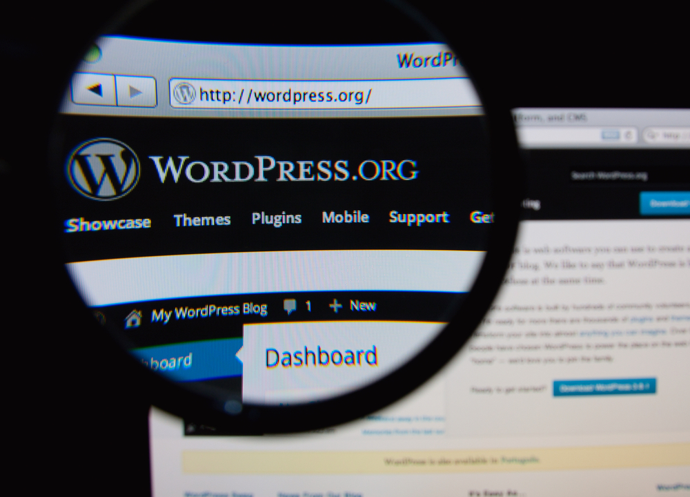 Wordpress and content marketing go hand in hand.