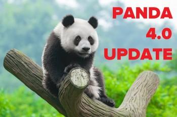 The latest Google Panda algorithm update - surprise, surprise! - rewards niche content. But is the SEO death knell for content aggregators?