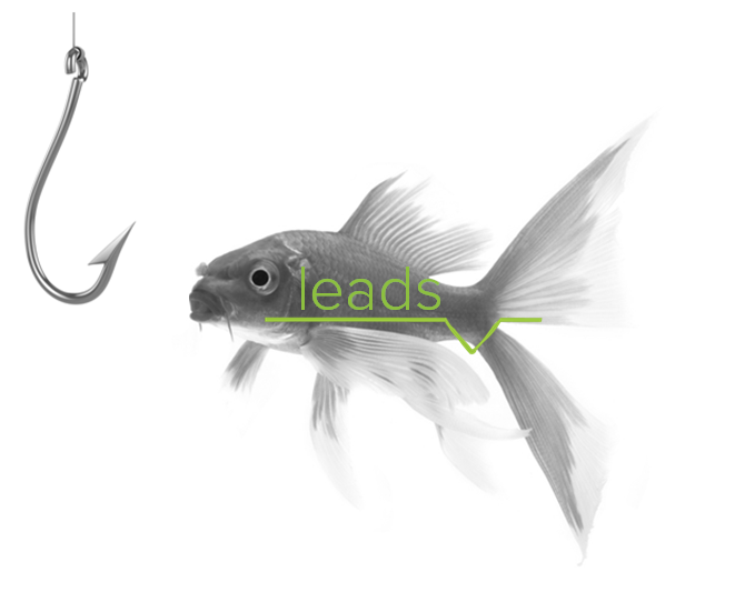 content hooks leads