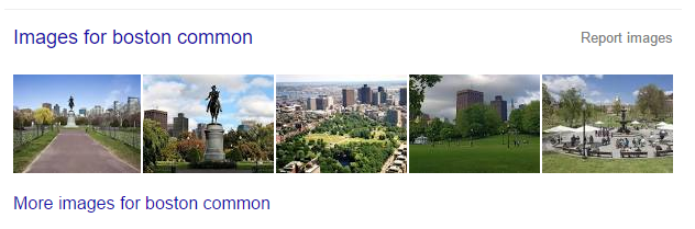 "A search for ""boston common"" will turn up a preview of Google image search results on the main SERP."