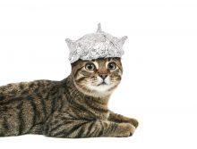 Understanding social media's impact on SEO doesn't require a tin foil hat.